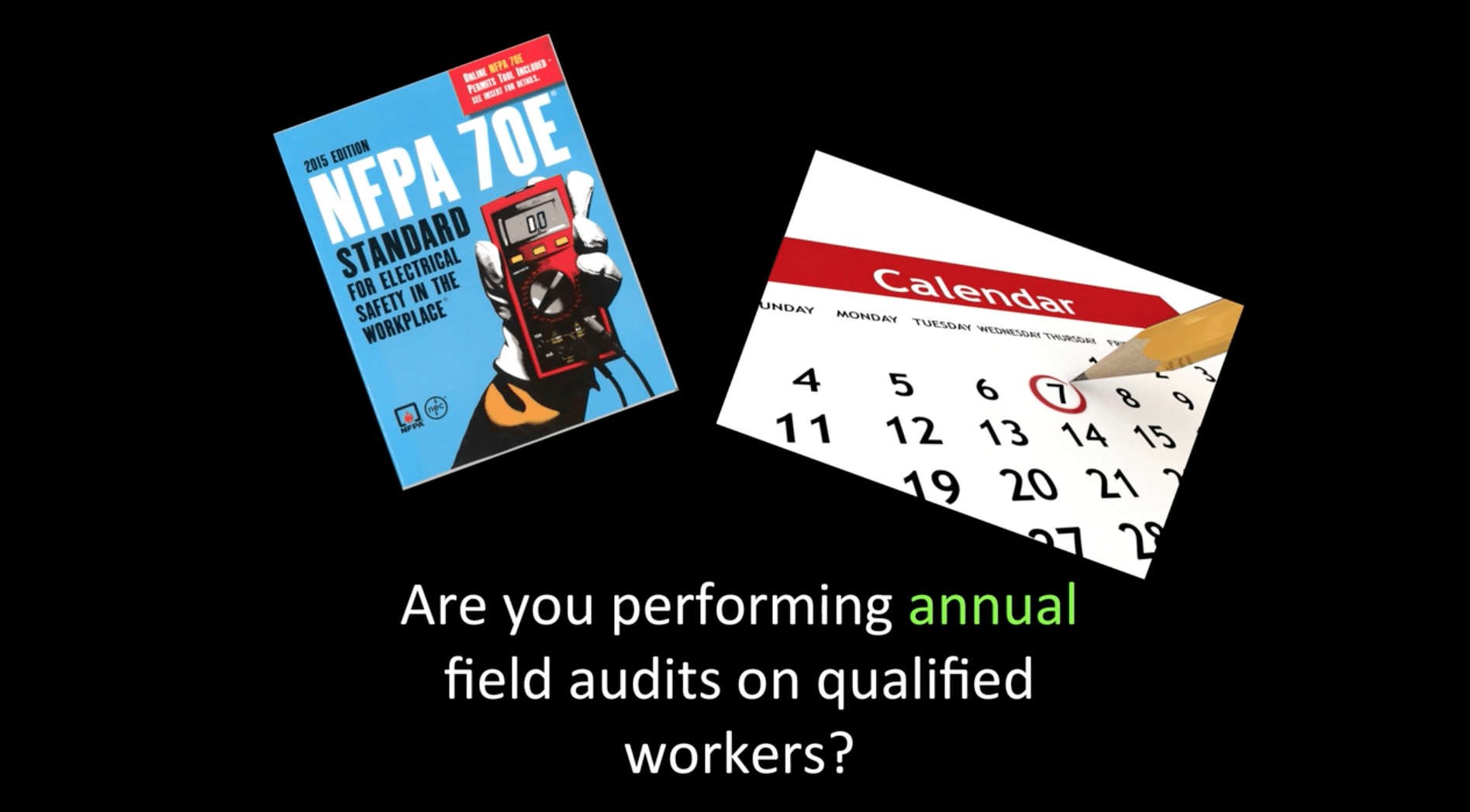 Annual field audit on qualified workers infographic